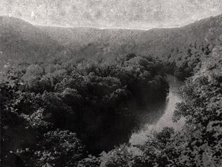 Surveillance Landscapes